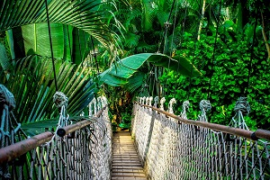 peru-amazon summer holiday destination